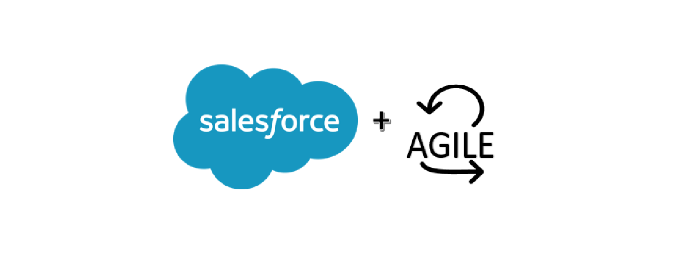 Salesforce Agile