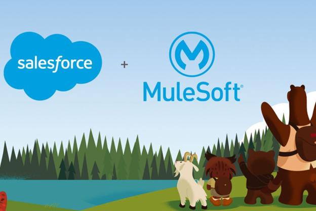 Mulesoft Implementation