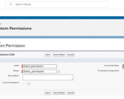 salesforce custom permissions